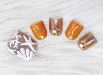 7、8月の新作 3Ⅾ sea shells
